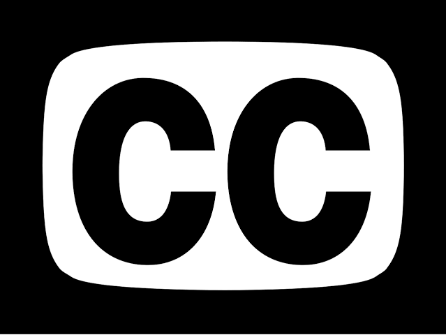 Closed Captioning Services